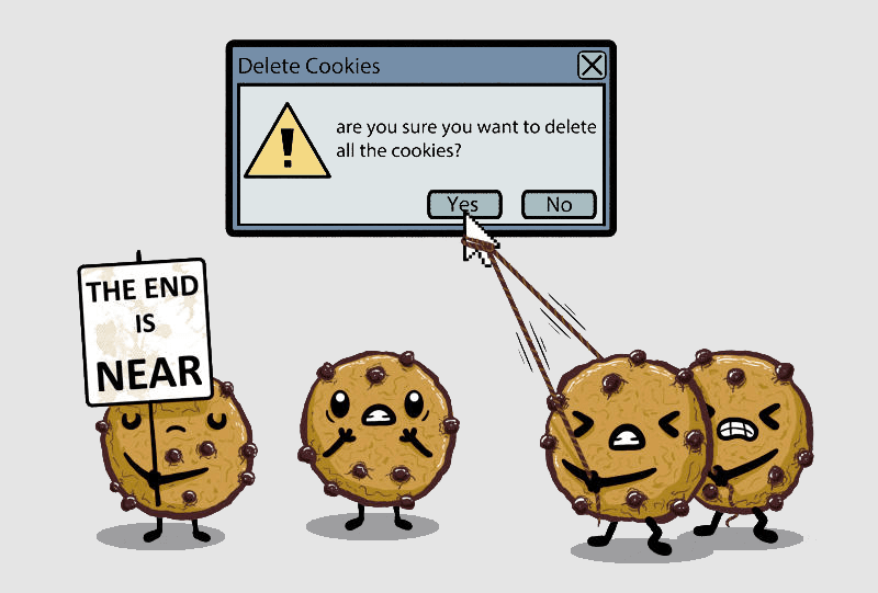 Deleting cookies from the browser